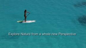 全く新しい視点から自然を探る